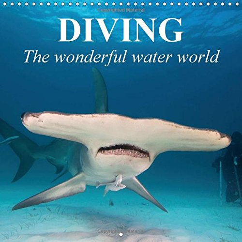 diving-the-wonderful-water-world-2017-adventures-in-the-dark-blue-sea