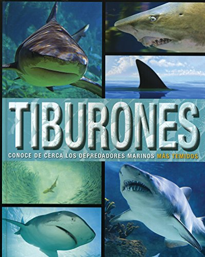 Tiburones. Conoce De Cerca Los Depredadores Marinos Mas Temidos