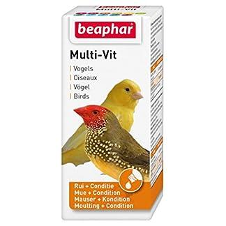 Beaphar Bogena Multi Vitamin for Parrots and Large Parakeets 20 ml Beaphar Bogena Multi Vitamin for Parrots and Large Parakeets 20 ml 511OUMKiGzL