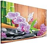 Delester Design PP106 O1 Orchidee, Bild 100 x 75 x 75 cm