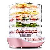 Séchoir à fruits électrique Sécheur de fruits pour viande de fruits frais et déshydratée 5 plateaux Protection contre la surchauffe Déshydrateur de fruits à domicile