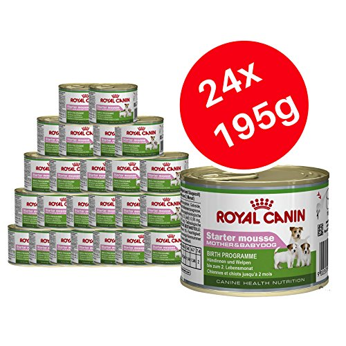 Royal Canin Starter-Mousse, Hundefutter für Mutter & Welpen, 24 x 195 g -