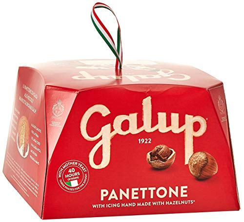 Galup n02 panettone classico, 750 gr