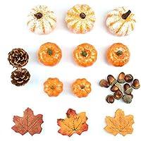 knowledgi Autumn Deco Artificial Maple Leaves Hojas De Calabaza Bellotas Bayas Kit De Decoración Accesorios De Tiro para Halloween Acción De Gracias, 50 Piezas