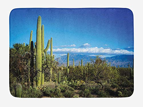 ASKYE Desert Bath Mat, Wide View of The Tucson Countryside with Cacti Rural Wild Landscape Arizona Phoenix, Plush Bathroom Decor Mat with Non Slip Backing, 23.6 W X 15.7 W Inches, Green Blue