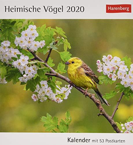 Heimische Vögel 2020 16x17,5cm