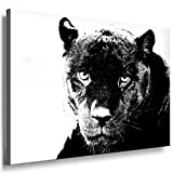 Fotoleinwand24 - Tiere Abstrakt