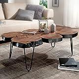 FineBuy Massiver Couchtisch Harlem 115 x 70 x 40 cm Massiv Holz Sheesham Baumstamm Tisch | Design Wohnzimmertisch aus Baumstamm Scheiben Massivholz | Metall Beine
