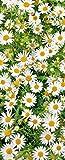 Banner - Thema: Frühling