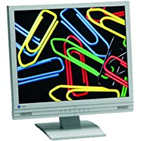 Eizo L767 48,3 cm (19 Zoll) TFT-Monitor weiss/beige mit integrierten Lautsprechern (DVI)