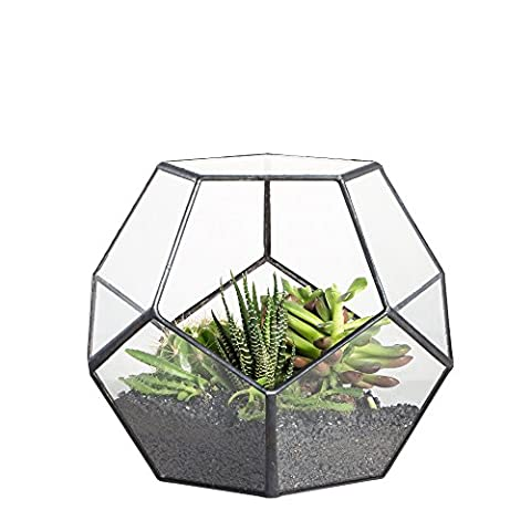 Handmade Pentagon Ball Shape Open Glass Geometric Terrarium Football Shape Garden Display Flower Pot Indoor Outdoor Table Top Vase Centerpiece Planter Large for Succulent Cacti Fern Moss 15cm Height