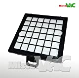 Hepa Filter geeignet Bosch BSG 81000/10 Ergomaxx professional