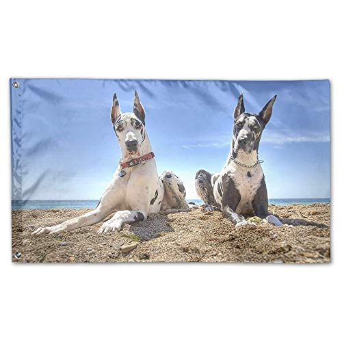 WEERQ Garden Flag Two Dogs On Beach Photo Outdoor Yard Home Flag Wall Lawn Banner Polyester Flag Decoration 30x45CM