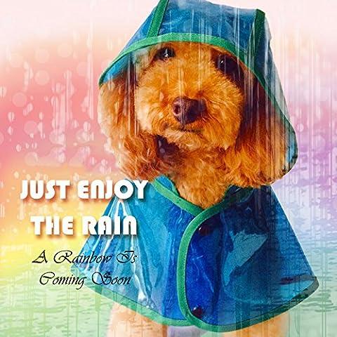 brighters (TM) transparente PET impermeable chubasquero cuatro pie para perros de tamaño pequeño a mediano primavera verano Poncho, Transparente,
