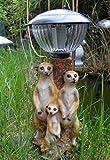 Erdmännchenfamilie mit Solar Laterne Lampe Erdmännchen Figur