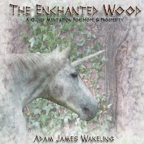 The Enchanted Wood - A Guided ...