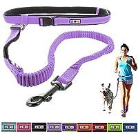 [Gesponsert]PAWTITAS Reflektierende, gepolsterte, Antischock-Outdoor-Trainingsleine zum freihändigen Laufen mit dem Hund Lila Orchidee farbe