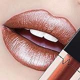 CICIYONER Damen Metall Lippenstift Lip Gloss Liquid Lippe Kosmetik, 24 Farben (19 #)