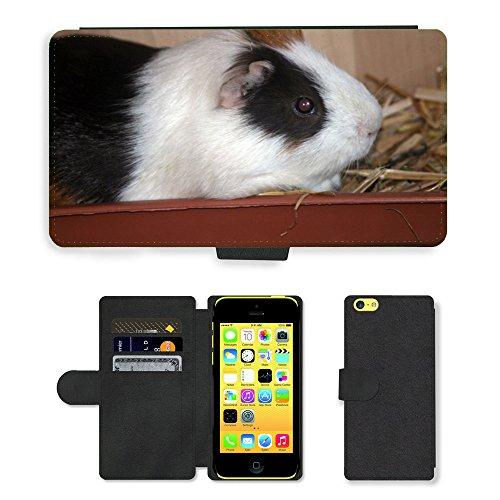 Just Mobile pour Hot Style Téléphone portable étui portefeuille en cuir PU avec fente pour carte//m00139426Guinée Pig mer Maison Animal//Apple iPhone 5C
