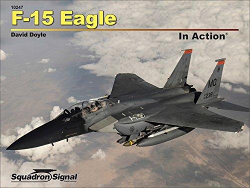 Gebraucht, F-15 Eagle in Action gebraucht kaufen  Wird an jeden Ort in Deutschland