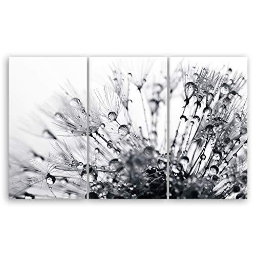 ge Bildet® hochwertiges Leinwandbild XXL Pflanzen Bilder - Another World - schwarz weiß - Blumen Natur Pusteblume - 165 x 100 cm mehrteilig (3 teilig) 2206 H