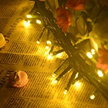 TurnRaise Stringa Fata Luce 22m 200LED String Luce per la Decorazione Casa Matrimonio Natale Partito Della Lampada Anche per Festa, Giardino, Natale, Halloween, Matrimonio (22M-Bianco caldo) - Copper Wire Bobine