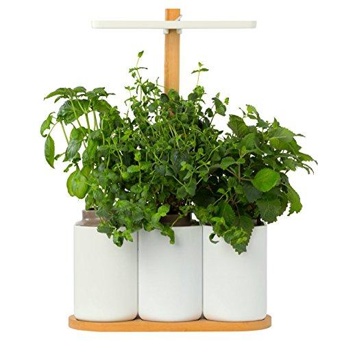 smart-lilo-le-potager-dinterieur-autonome-pret-a-pousser-jardinez-toute-lannee-simplement