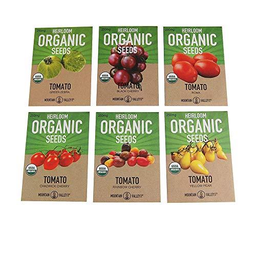 Organic Heirloom Cherry Tomato Garden Seeds - 6 Non-GMO Varieties: Yellow Pear, Chadwick Cherry, Black Cherry, Rainbow Cherry, Roma & Green