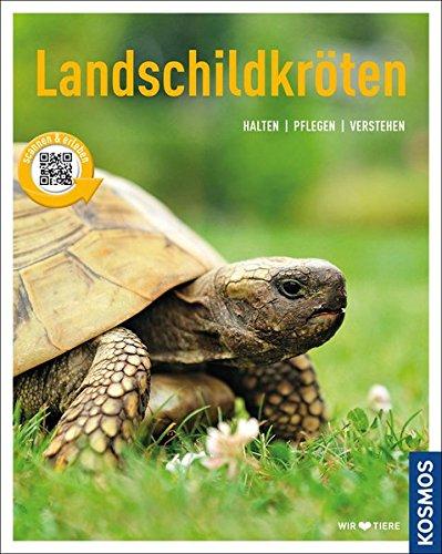 Preisvergleich Produktbild Landschildkröten: halten, pflegen, verstehen (Mein Tier)