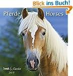 Pferde Horses 2017