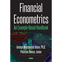 Financial Econometrics: An Example-based Handbook (Economic Issues Problems Persp)
