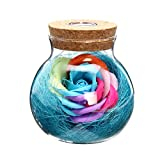 VORCOOL Rose Wunsch Flasche handgemachte ewige nie verwelkte Blume mit Fernbedienung 7 Farbe LED Light Flasche Geschenk zum Valentinstag Muttertag Jubiläum Geburtstag Hochzeit (blau)