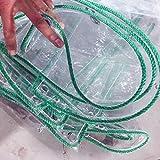 ZQ Abdeckplane Verdicken Sie die Plane klar - wasserdichter PVC-durchsichtiger Plastikschuppentuch-Gewächshaus-Blattabdeckungen, die mit Tüllen regenfest sind, 450g / m² (größe : 1M×3M)