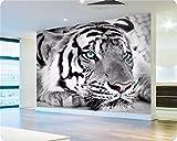 Yosot 3D Papel pintado Papel pintado Photo Personalizado Livingroom Mural Tigre Blanco Y Negro Pintar Habitación Cama Sofá Tv Adhesivo De Pared De Fondo-140Cmx100Cm