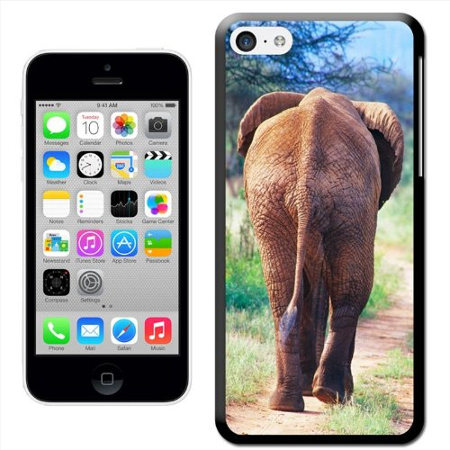 Fancy A Snuggle 'Elefant Walking in African Savannah' Hard Case Clip On Back Cover für Apple iPhone 5 C Rear View Of A Walking Elephant