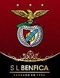 Infinite Arts SL Benfica (24inch x 31inch/60cm x 78cm) Silk