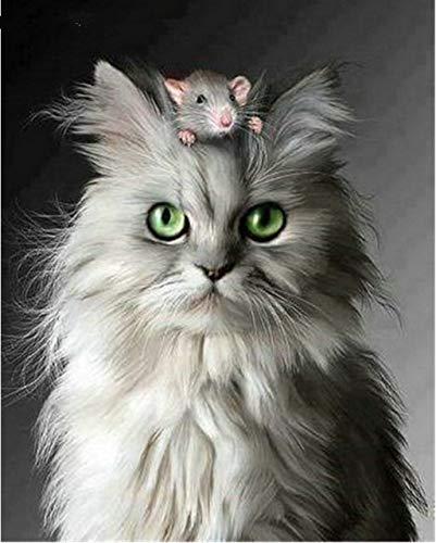 Ratón y gato pintura diamante, 18X23CM