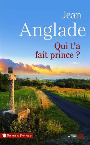 Qui t'a fait prince ? : roman