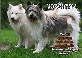 INDIGOS UG - Türschild FunSchild - SE472 DIN A5 ACHTUNG Hund Elo - für Käfig, Zwinger, Haustier, Tür, Tier, Aquarium - aus hochwertigem Alu-Dibond beschriftet sehr stabil