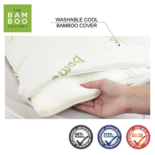 Bamboo Pillow Case, Cool Luxury Pillowcase, Hypoallergenic Microfiber Cover for a Dust Mite Allergen Free Sleep (Bamboo Pillow Case Only)