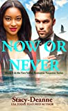 Now or Never (Tate Valley Romantic Suspense Series Book 1)