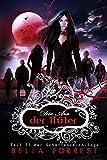 Das Schattenreich der Vampire 33
