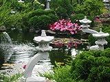 Japanische Rankei Steinlaterne K - asiatische Gartenlaterne - 6 teilig winterfest