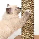 """Vesper 52042 Katzenmöbel """"Base"""" walnut – Kubus-Höhle mit einer Plattform - 6"""