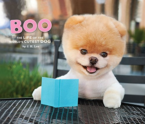 Boo: The Life of the World's Cutest Dog (English Edition)