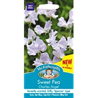 Mr. Fothergill's 23230 Charlies Angel Sweet Pea Mixed Flower Seeds