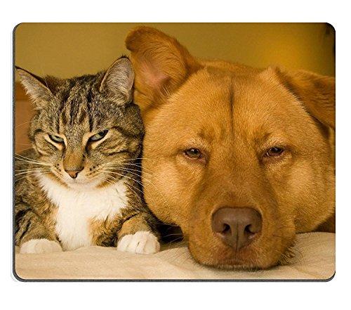 luxlady Gaming tapis de souris se reposer Ensemble sur le lit pour chien et chat image d'identité 3090271