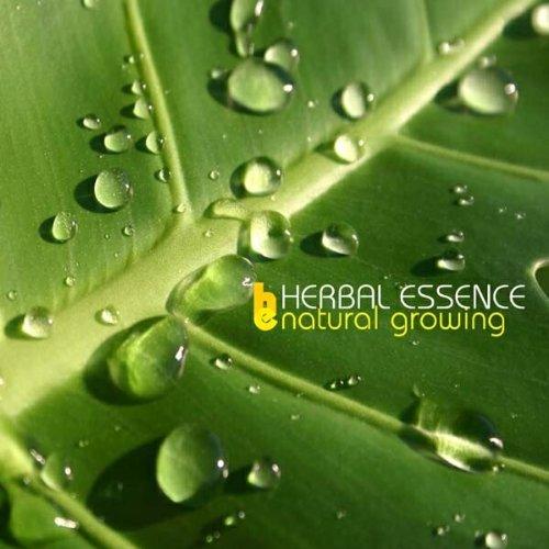 natural-growing