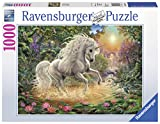 Ravensburger 00.019.793 1000pieza(s) rompecabeza - Rompecabezas (Jigsaw puzzle, Fantasía, Niño pequeño, Unicornio, 14 año(s), Niño/niña)