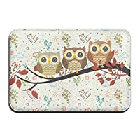 Three Owls Front Door Mat 4060 Cm